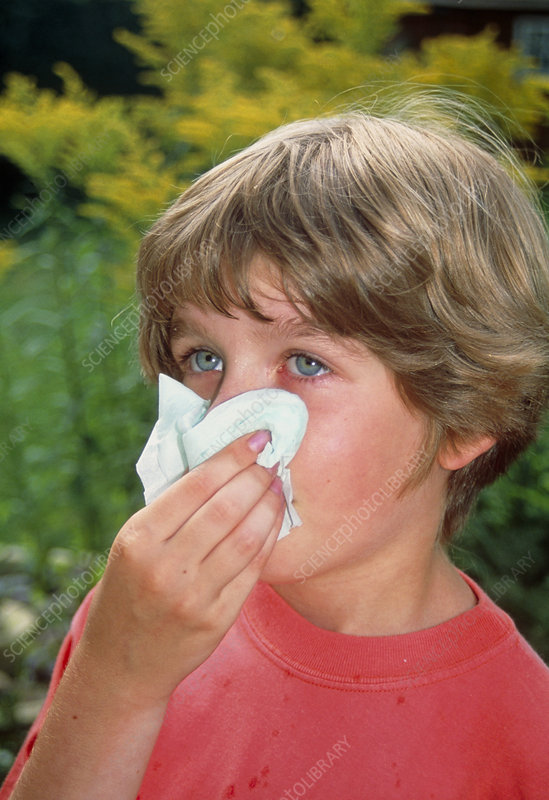 Hay fever: young girl blows her nose