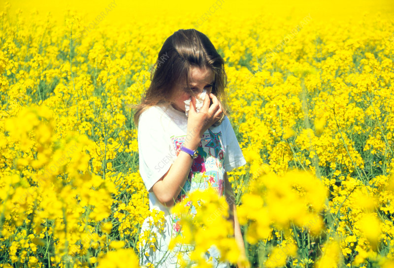 Young girl suffering from hay fever in a field