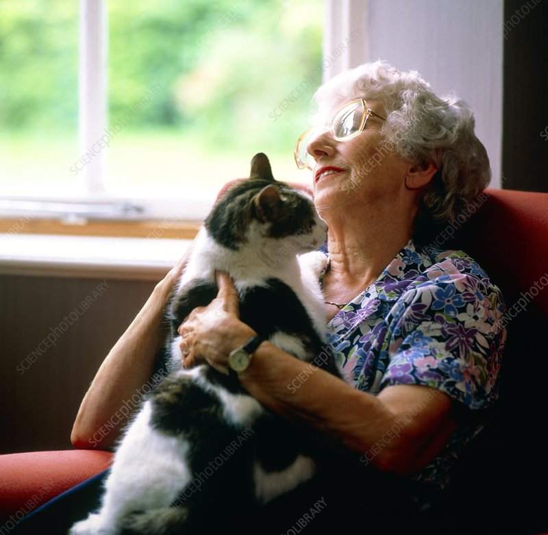 Loneliness: elderly woman getting comfort from cat