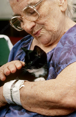 Old Woman with Kitten