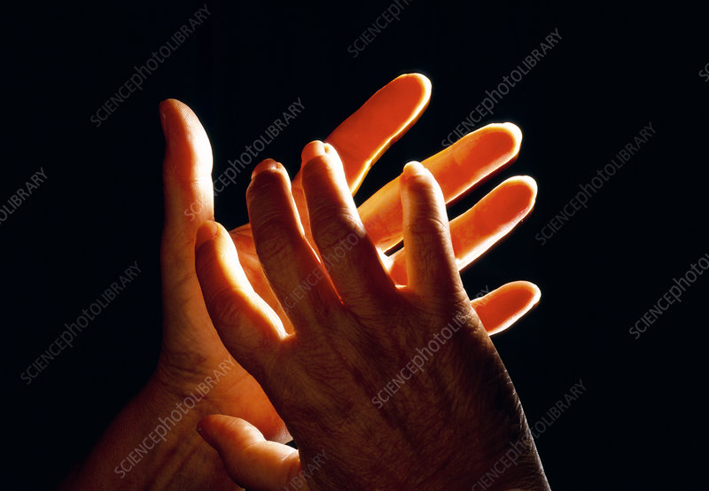View of hands using sign language