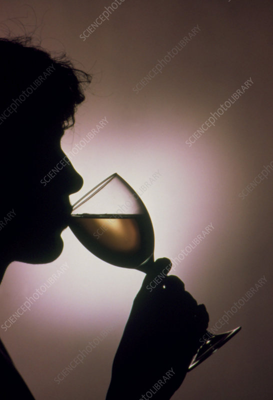 Person drinking alcohol, silhouette.