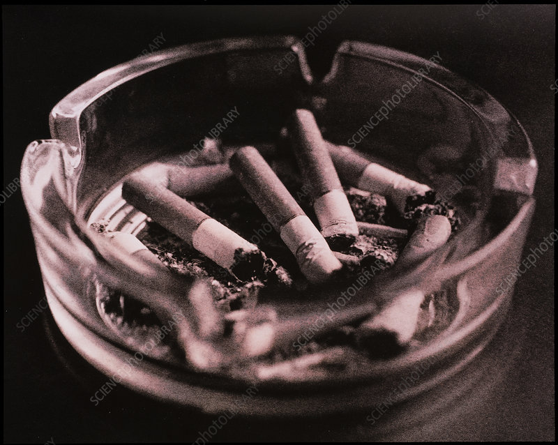 Close-up of cigarette butts in an ashtray