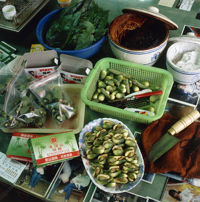 Preparation of Betel-nuts, a habit-forming drug