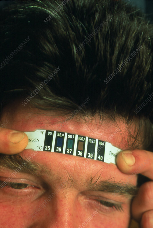Man using a thermochromic strip thermometer