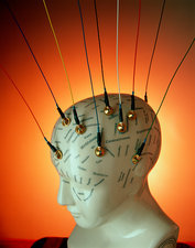 EEG electrodes on a model phrenology head