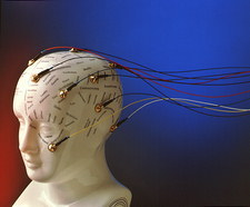 View of EEG electrodes on a model phrenology head