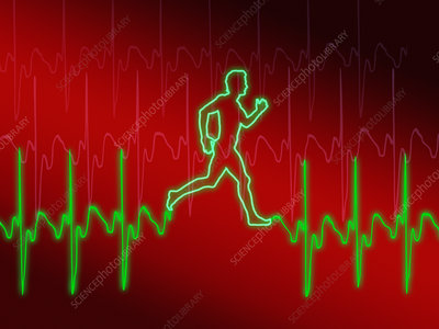 ECG and man running