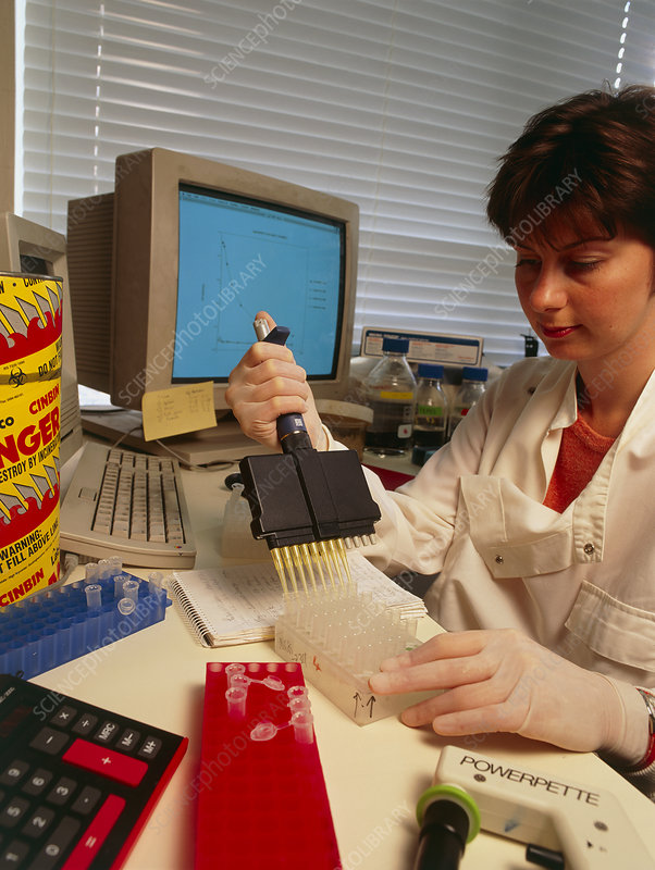 Researcher using multichannel pipette, ELISA test