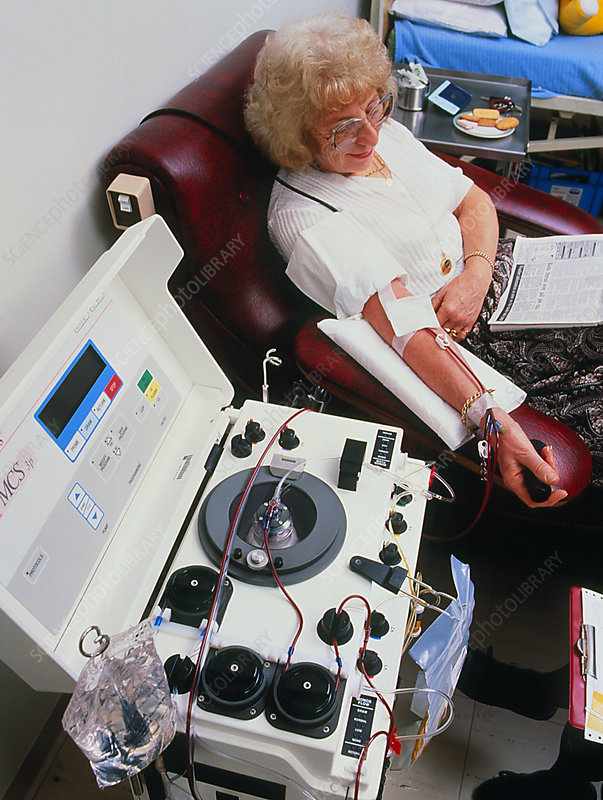 Woman donating blood platelets at Apheresis Clinic