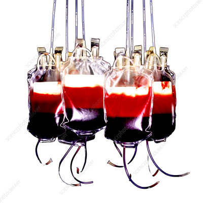 Suspended blood bags