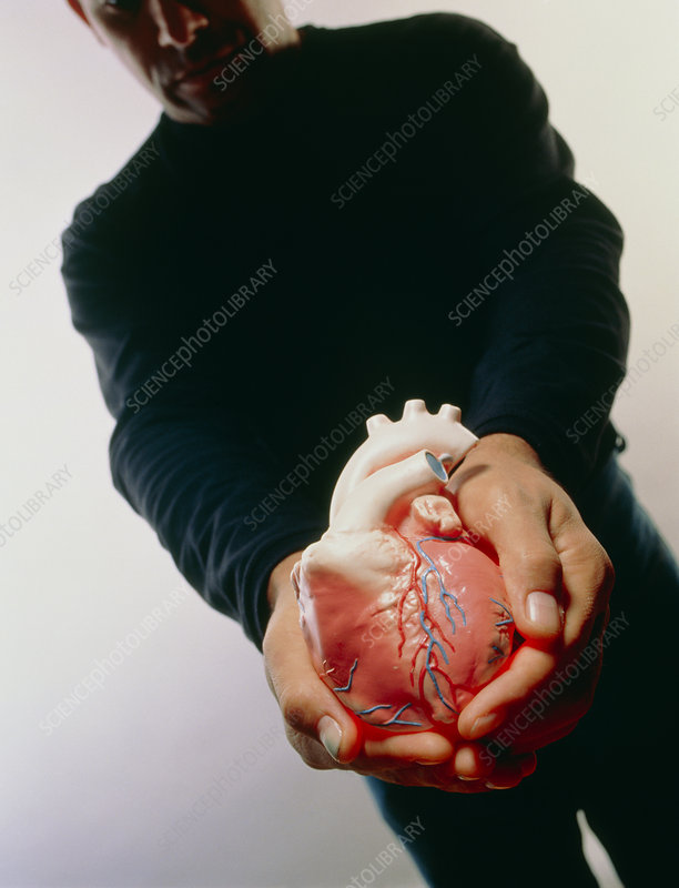 Heart donation abstract: donor gives his heart