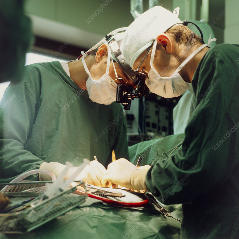 Surgeons performing open heart microsurgery