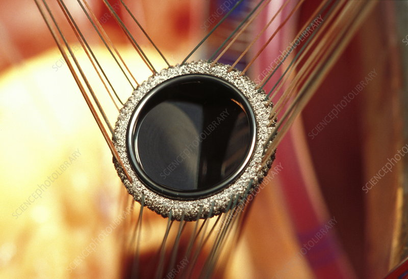 Prosthetic heart valve during surgery