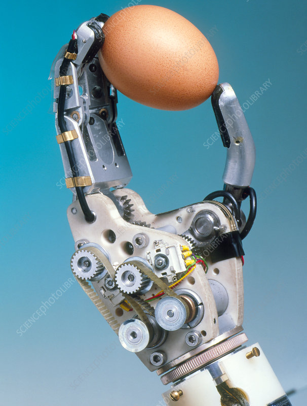 Robotic artificial hand holds an egg