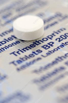 Trimethoprim antibiotic pill
