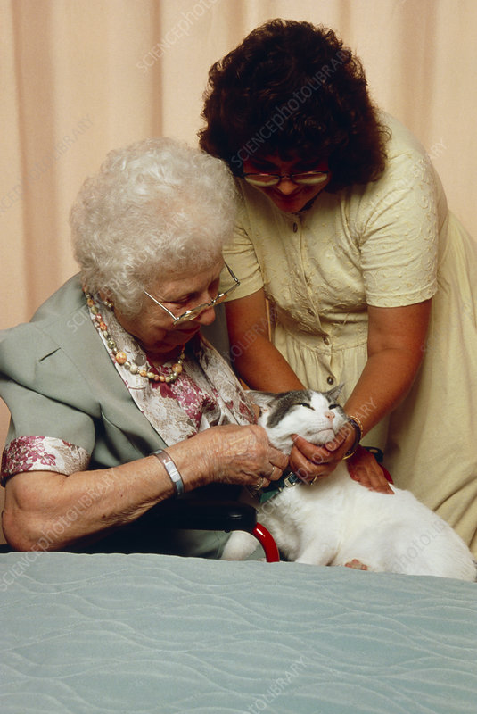 Elderly woman stroking cat as part of therapy