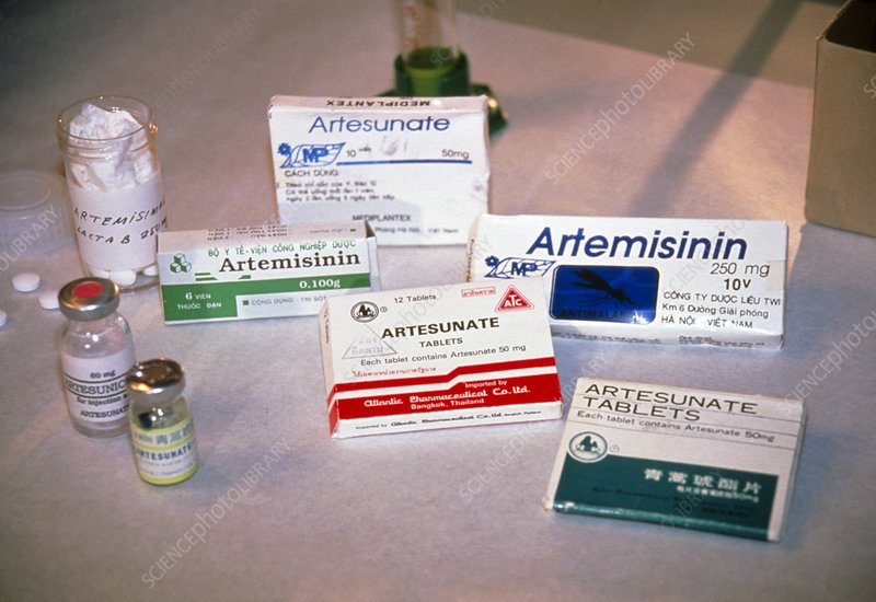 Antimalarial drugs from Artemisia annua plant