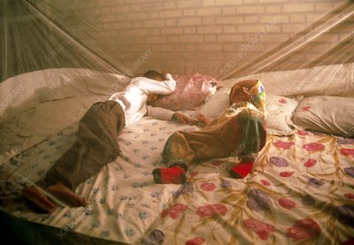 Young boys sleeping under a mosquito net
