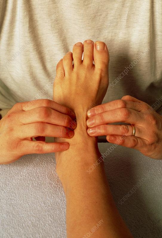 Hands of a reflexologist massaging a woman's foot