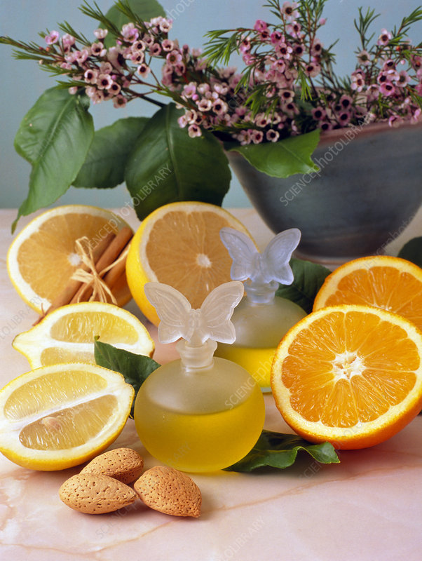 Bottle of aromatherapy oil and ingredients