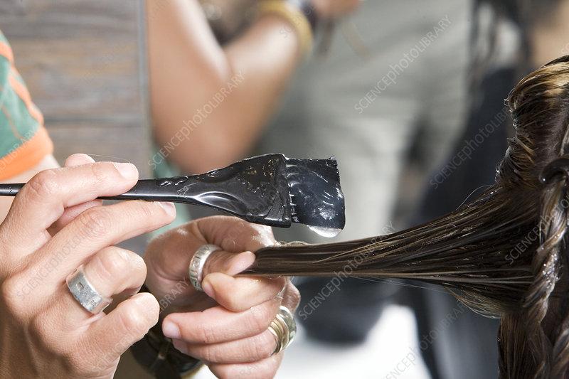 Bull semen hair treatment being applied