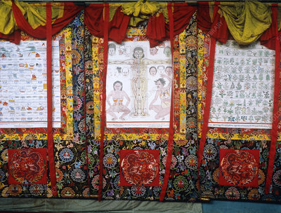 Display of Tibetan herbal medicine charts