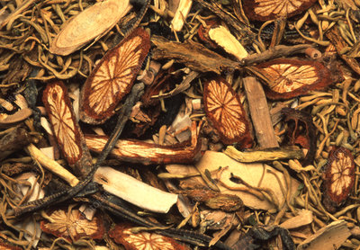 Assortment of herbs used in Chinese medicine