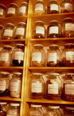Jars of herbs used in Chinese medicine