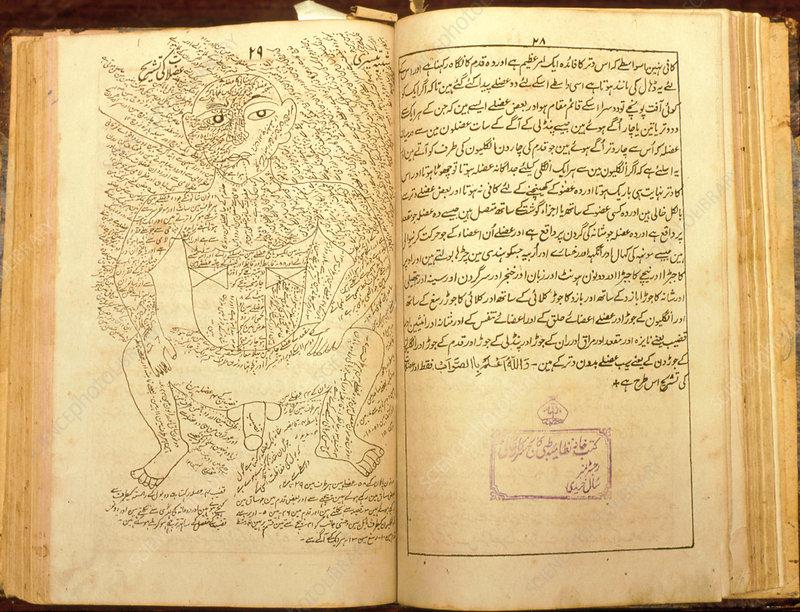 Ayurvedic textbook