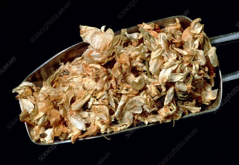 Dried jasmine