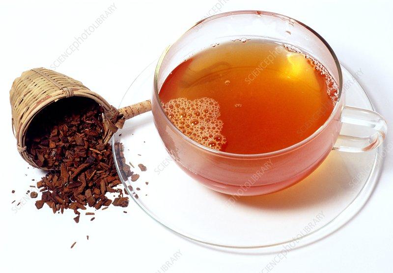 Jesuit's powder tea