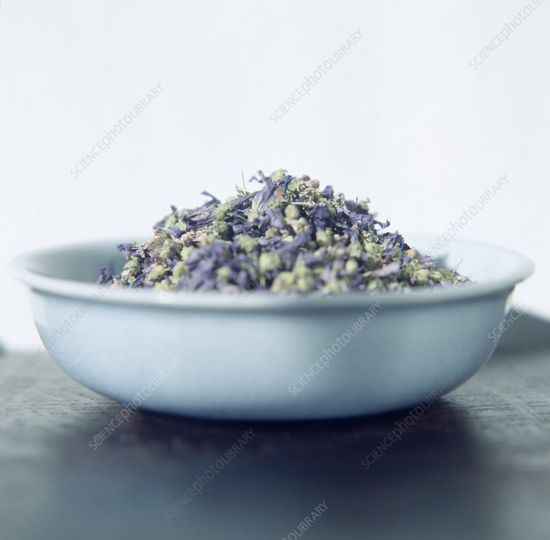 Lavender blooms in a bowl