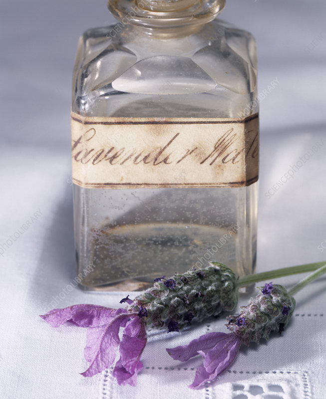 Lavender flowers and water
