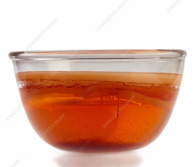 Kombucha tea - Stock Image M750/0583 - Science Photo Library
