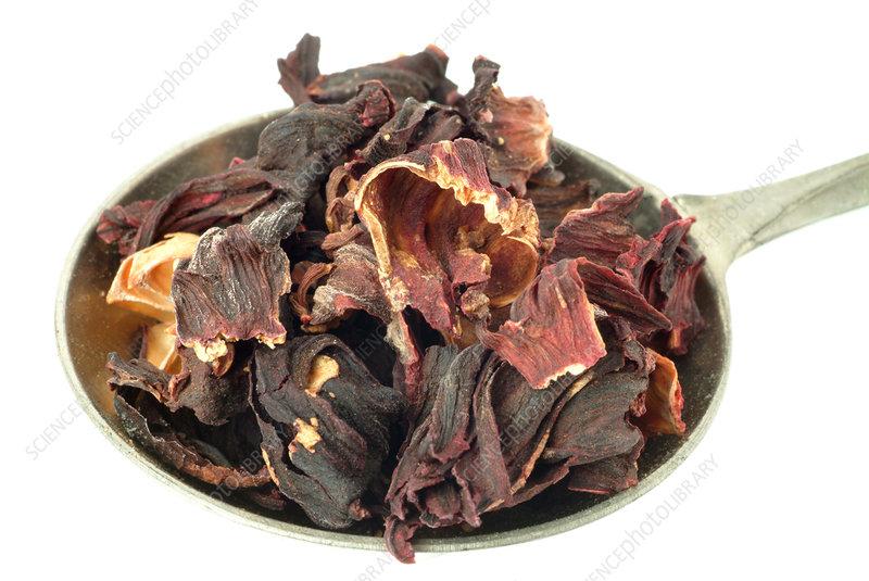 Dried hibiscus petals - Stock Image M750/0695