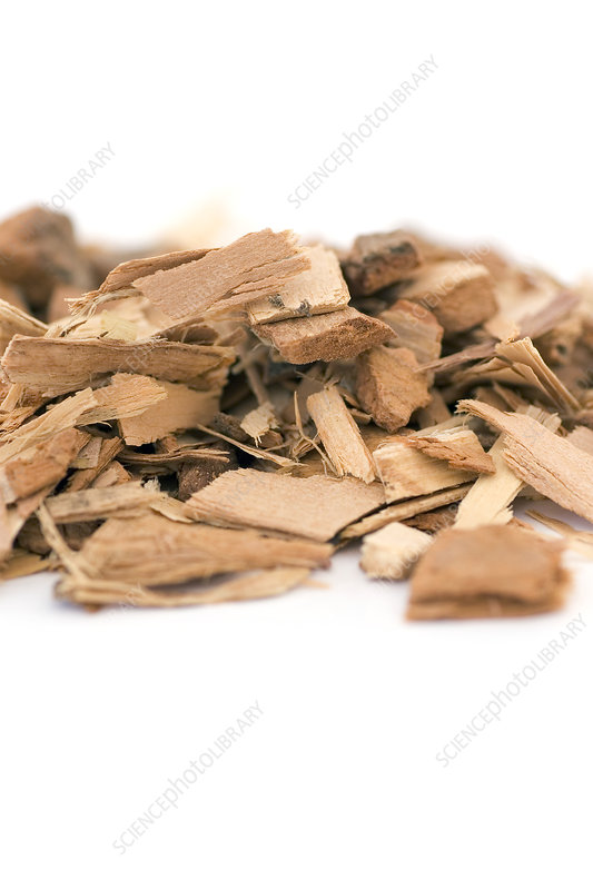 Dried poplar