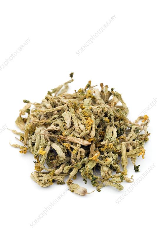 Cowslip herb