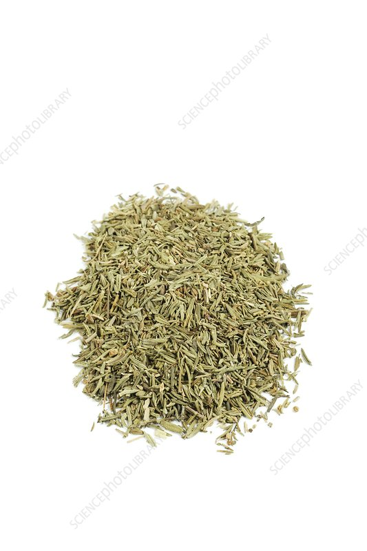 Thyme herb