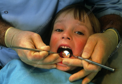 Child undergoing a dental examination