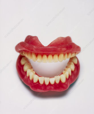 False+teeth