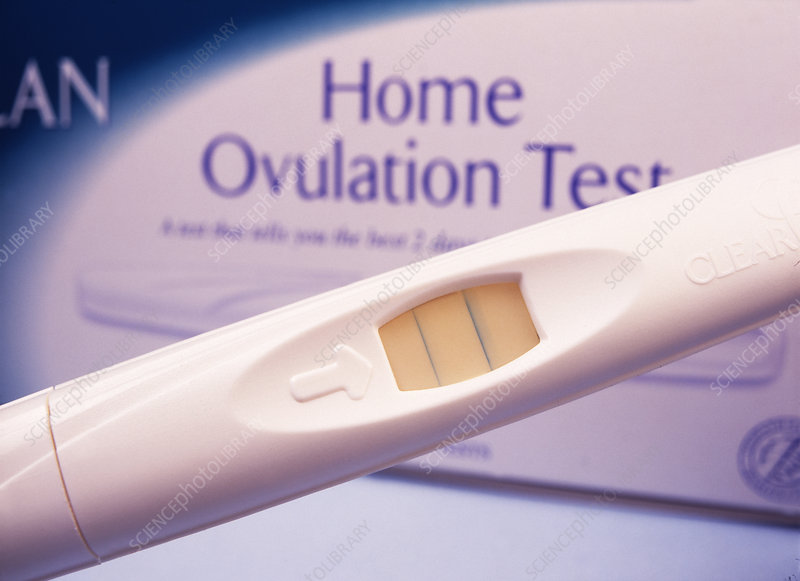 Home ovulation test