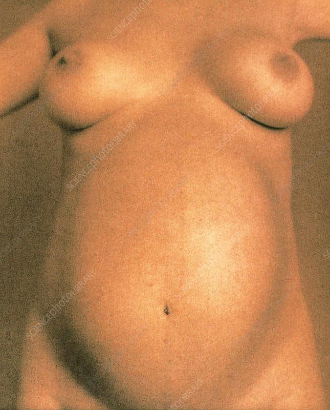 Naked torso of a pregnant woman