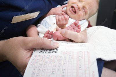 Neonatal blood screening