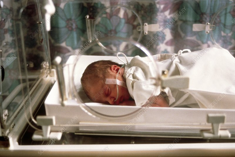 Premature baby in a thermostat-controlled cot
