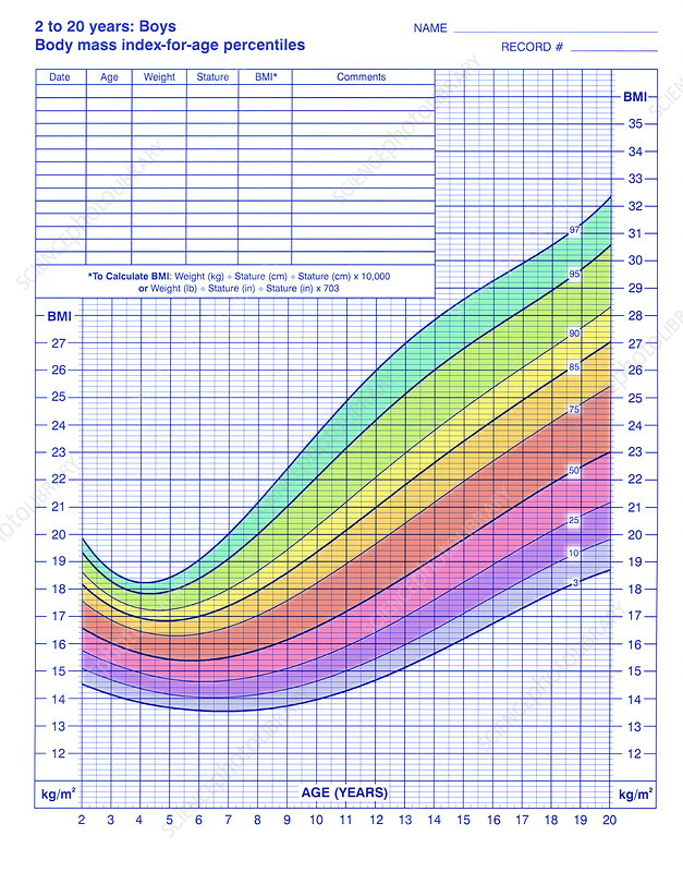 Body Mass Index Chart Stock Image M8250845 Science Photo Library