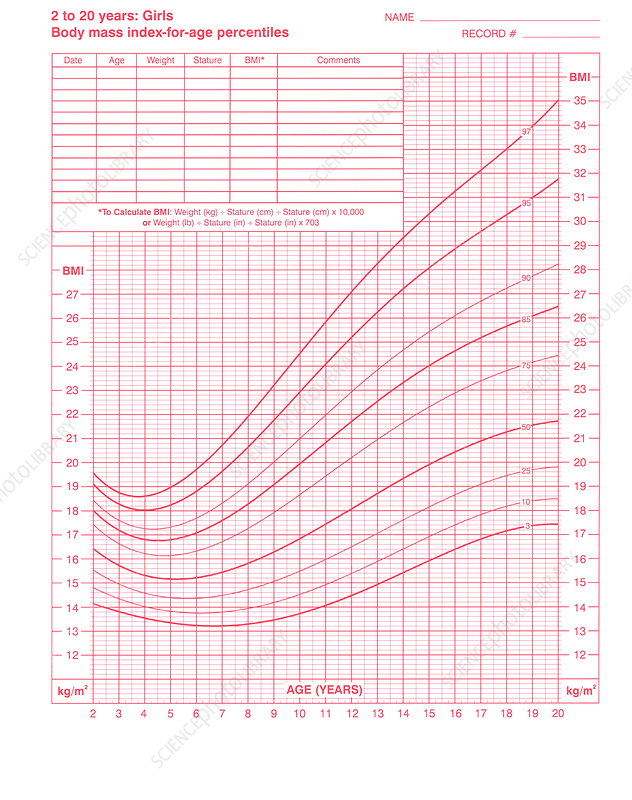 Body Mass Index Chart Stock Image M8250846 Science Photo Library