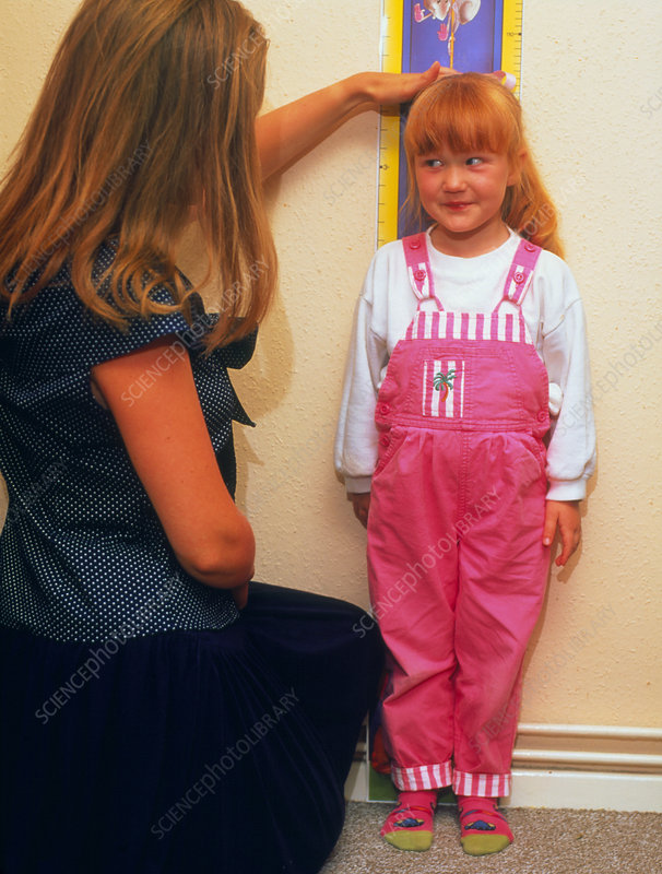 Using wallchart to measure young girl's height