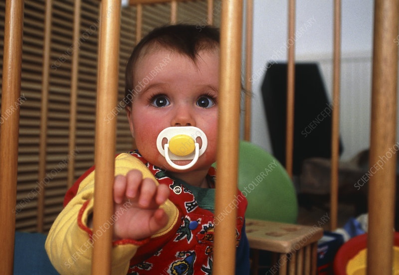 A baby sucking on a dummy in it's cot
