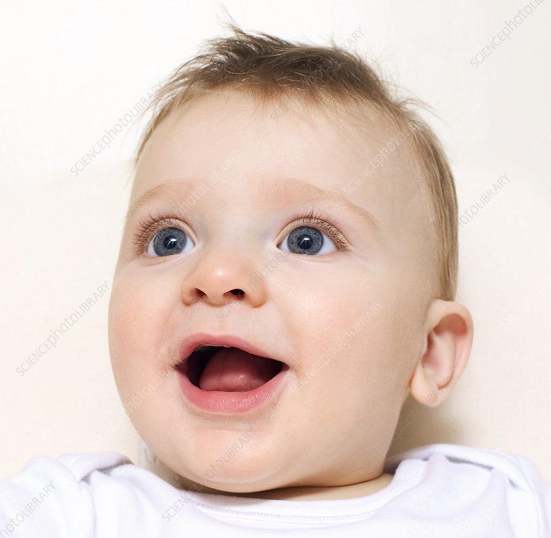Baby Boy Faces